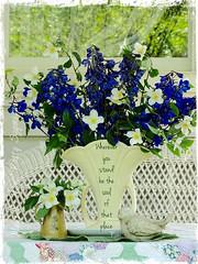 May bouquet (~*~ MagpiesNest) Tags: flowers blue white bird quote blooms wicker delphinium mockorange rumi pixlrexpress quiltgrandmasgarden