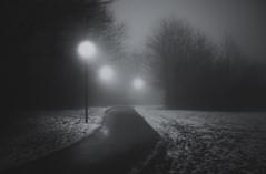Adumbrate (Appe Plan) Tags: road street trees winter light sky mist snow lund nature fog night skne nikon sweden path walk appe d700