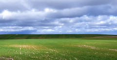 paisaje 81 (rokobilbo) Tags: sky green clouds landscape earth meadow planting castilla