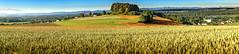 Panorama-Luftenberg-Alpen (Ralph Punkenhofer) Tags: blue summer sky panorama mountain landscape nikon outdoor sommer feld himmel berge d750 alpen landschaft sonne morgen blauer aky luftenberg pulgarn
