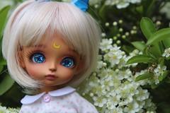 Usako (Gigiholy) Tags: yellow vampire sunny wig modded lati flittermouse leekeworld clearlan nomyens littlejuli oscardolleyes
