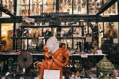 QF4C7768 (leslilundgren) Tags: museum pittriversmuseum