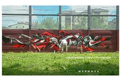 6878 (Massimiliano Fattizzo p.) Tags: street blackandwhite italy streetart milan colors graffiti colours milano colori