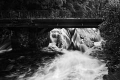 Favoritentter (hlange92) Tags: wasser fluss monschau wehr rur wildwasser einfarbig