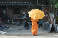 002-Cambodia (Beverly Houwing) Tags: orange yellow metal umbrella workers cambodia robe monk observe phnompenh