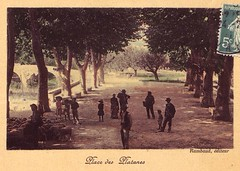 place_des_platanes_2