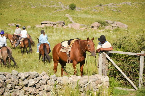 Horseriding at Estancia Los Potreros