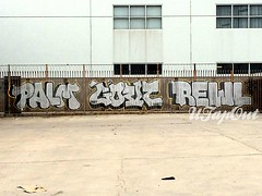 PALM GOVERN REWL (UTap0ut) Tags: california art cali graffiti la paint palm socal cal graff hof govern u5f rewl utapout