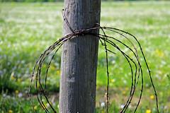 Rustic Roads 11 024 (kg.hill50) Tags: nature wisconsin rural rustic farmland farms roads backroads rusticroads11
