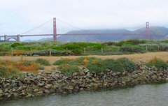 "Chrissy Field (""Cisco Kid"") Tags: goldengatebridge"