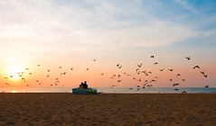 Love (Raghunathan Anbazhagan) Tags: sky people sun india love beach clouds marina sunrise ngc roots couples tamilnadu roi cwc chennaiweekendclickers flickrtravelaward