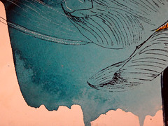 DSC09516 (scott_waterman) Tags: blue detail ink watercolor painting paper lotus gouache bluehue lotusflower scottwaterman
