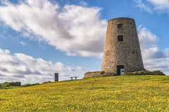 Cleadon Hills (robinta) Tags: flowers colour tower windmill grass architecture pentax vibrant ruin meadow historic ks1 cleadon tamron18250mm