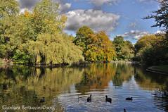 DSC_0361 (bertu89) Tags: wild dublin lake landscape lago nikon natura irland paesaggio dublino irlanda 18105 2015 ststephengreen d5000 bertu89