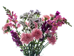 La vie en rose - 2 (Micheo) Tags: pink flowers flores rosa bunch ramo snapdragons carnations claveles conejitos limonium jarrn primavera2016