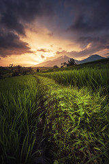 Bali - Jatiluwih Sunset (claudecastor) Tags: travel sunset bali rot nature sunrise indonesia landscape asia asien southeastasia sdostasien sonnenuntergang rice terrace natur terraces reis ricefield landschaft sonnenaufgang indonesien reisfeld reise terrassen jatiluwih