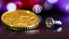 Smaller Than A Coin - Macro Mondays (Yasmine Hens) Tags: macro coin europa flickr belgium bokeh ngc vis pice namur hens yasmine wallonie macromondays iamflickr flickrunitedaward smallerthanacoin hensyasmine