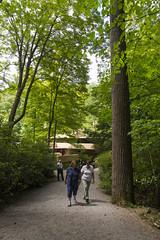 DUG_7342r (crobart) Tags: fallingwater frank lloyd wright kaufmann bear run nature reserve pennsylvania