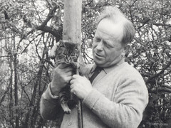 My father with Alice (1967) (Finn Frode (DK)) Tags: cats tabby mixedbreed domesticshorthair frodehansen kildebrnde animal pet cat outdoor