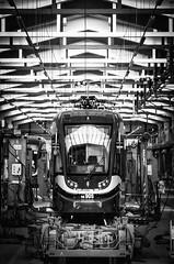"""New tram """"Krakowiak"""" in Krakow (d2luk) Tags: tramwaj tram mpk krakw krakowiak cracow cracovia bw railway pesa polska poland polonia maopolska maopolskie september wrzesie 2016"""