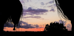 African Sunset (jolom) Tags: moz vacation mozambique travel