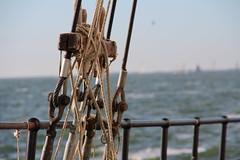knots (Jensje) Tags: netherlands niederlande ijsselmeer klipperrace 2016 blue wind sunshine sailing zeilen segeln classic broedertrouw wand