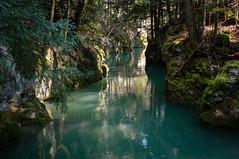 La rivière secrète (Tonton Dave) Tags: nature water river landscape switzerland eau suisse rivière paysage vaud vallorbe jougnenaz