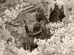 Queen For A Day .... Victoria Day (Greg's Southern Ontario (catching Up Slowly)) Tags: canada monochrome statue sepia blossoms queen bronzestatue queenvictoria victoriaday victorianera torontoist britishroyalfamily britishroyalty marioraggi victoriadaycanada