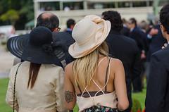 Jockey Club de So Paulo (mcvmjr1971) Tags: brasil nikon sopaulo cavalo corrida f4 sigma100300mm turfe d7000 mmoraes jockeyclubcidadejardim