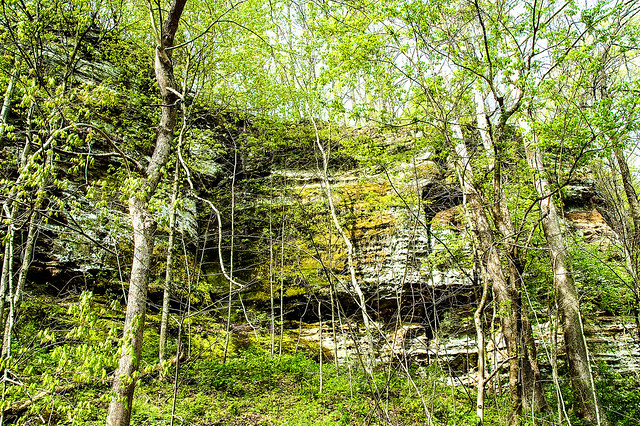 Bluffs of Beaver Bend Nature Preserve - April 24, 2015