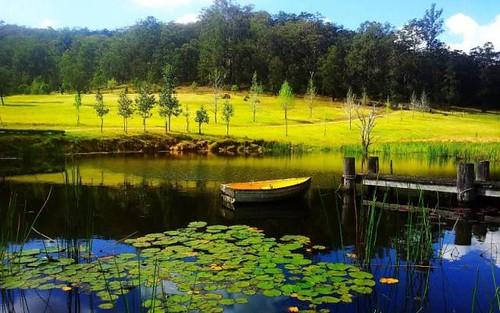 Laguna NSW