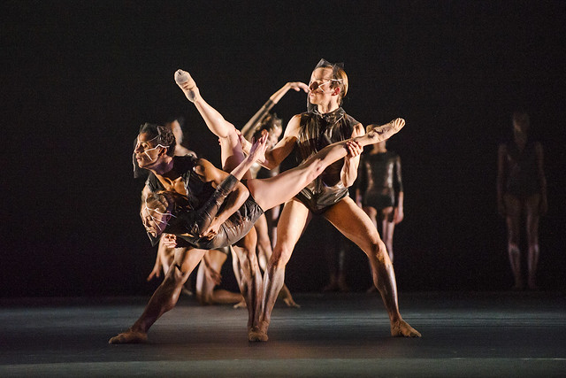 Promotions, joiners and leavers at The Royal Ballet for 2015/16 — Royal Opera House