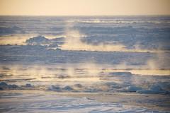 Ny is   New ice (Algot Foto) Tags: snow cold ice smoke freezing steam arctic polar cracks lead seaice icefloe heatflux newice scientificcruise nice2015