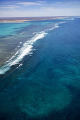 WA Coral Bay - 4621
