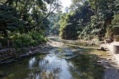 DS1A3888dxo (irishmick.com) Tags: nepal kathmandu 2015 guhyeshwari bagmati ghat