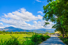 Dingras (MARTIN Solero Rafol) Tags: road travel mountains green nature landscape nikon farm philippines fields province d5100 nikond5100