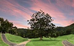 657 Cudgera Creek Road, Cudgera Creek NSW