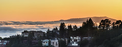 tamalpais sunset (pbo31) Tags: california houses sunset panorama orange color silhouette june fog oakland evening spring nikon marine mt view over large panoramic bayarea layer eastbay tamalpais stitched hilltop alamedacounty 2016 boury pbo31 d810 hillerhighlands