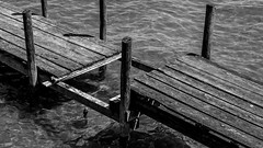 Mind The Gap (Ulmi81) Tags: wood bw white black reflection water out pier wasser decay watch may gap olympus mai sw ft anleger holz ammersee zuiko schwarz careful omd reflektion steg em1 vorsicht 2016 verfall planke weis diesen 1454 bohle lcke