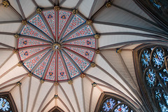 Chapter House - York Minster (Hoss Photon) Tags: york travel blue red england color building glass architecture gold artwork europe paint pattern cathedral unitedkingdom geometry ceiling stained leicaq 280mmf17