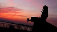 nightfall silhouette (NOZOMUN_SHBVD) Tags: toys twilight sigma30mmf14dc dd volks  hatsune miku  dollfiedream bfigure jfigure 80d  hatsunemiku  portnagoya  dd inaepark