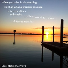 quote-liveintentionally-when-you-arise-in-the (pdstein007) Tags: inspiration quote carpediem inspirationalquote liveintentionally