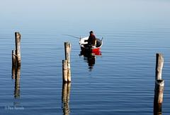 kalastaja (Paivi Hannele) Tags: blue sea reflection nature animals finland landscape boat meri naantali canonphoto thisisfinland visitfinland ourfinland