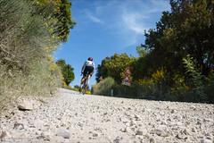Strade Bianche (Torsten Frank) Tags: italien canyon verkehr selbstportrait fahrrad weg toskana radfahrer rennrad radfahren schotter radsport sportler stradebianche unbefestigt wirtschaftsweg ultimatecfslx