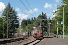E655 202 (Samuele Poli - SierraAlpha photos) Tags: old rome train florence grigio blu perla mrs freight 202 orientale origine caimano e655 livrea sellero firenzeroma kaimanone1