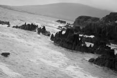 IMG_4375 (r4ytr4ce) Tags: ireland blackandwhite landscape 50mm eire kerry ire ciarra