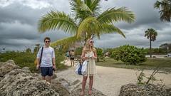 Fort Zachary Taylor Park, Key West (emptyseas) Tags: ocean park cruise trees sea usa west beach water car landscape coast seaside nikon key ship florida fort outdoor palm atlantic shore taylor zachary sunbathers d800 emptyseas