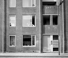 Center white (Jan Mulders) Tags: white black 120 mamiya film window analog cat outside flat 4 7 rangefinder ii medium format 6x7 pushed fp ilford