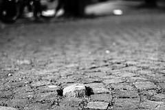 Unique stone (Lasorigin) Tags: street city grass stone night canon 50mm photo pierre gray strasbourg rue lightroom pav pavment urbanpicture