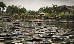 Hoa Lu, Vietnam (Onur_Ekmekci) Tags: river vietnam lu hoa